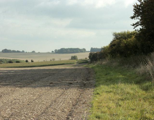 2009 : South on the lane to Keysley Farm
