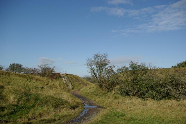 Track at disused railway embankment