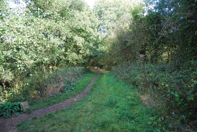 The Wealdway along the Straight Mile, Haysden Country Park