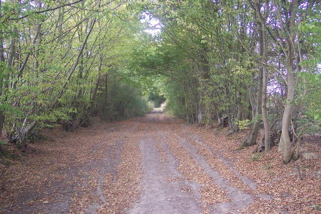 Gadsby Lane to Green Lane
