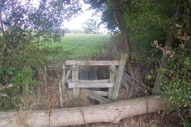 Stile, footbridge and fallen tree, near Gadsby lane
