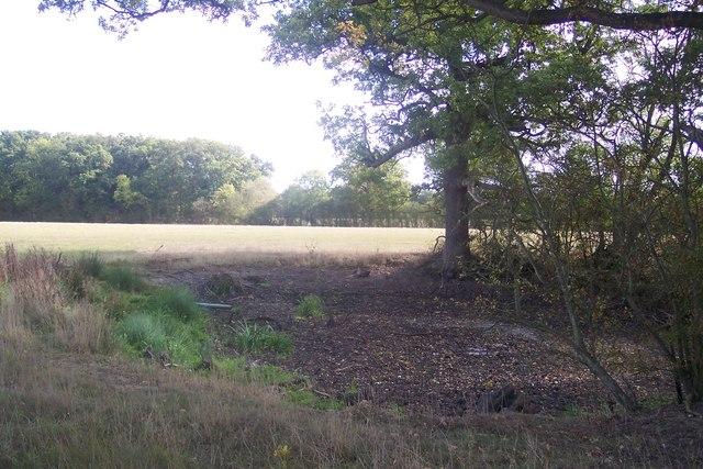 Dry pond near Gadsby Lane