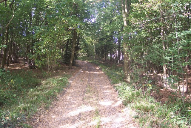 Restricted Byway in the Grove