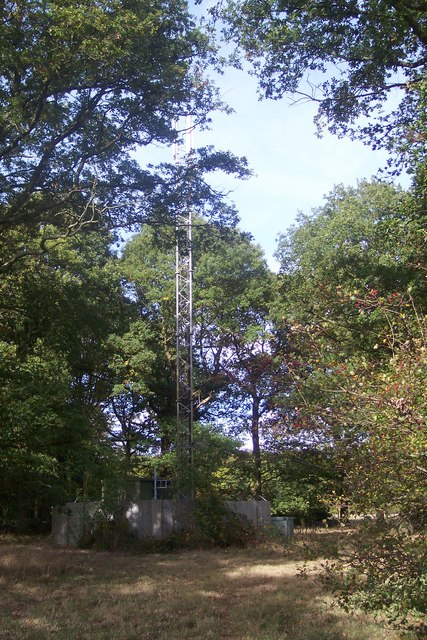 Vodafone Mast in Poppet Wood