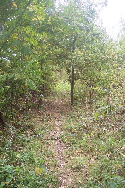 Footpath to Biddenden Road