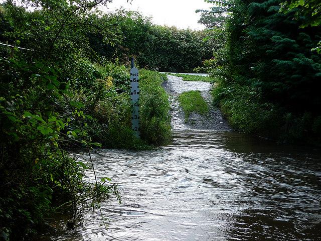 Ford, River Redlake, Bucknell