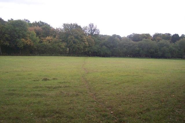 Footpath to Hogpat Plantation