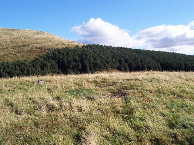 The summit of Burnt Humbleton