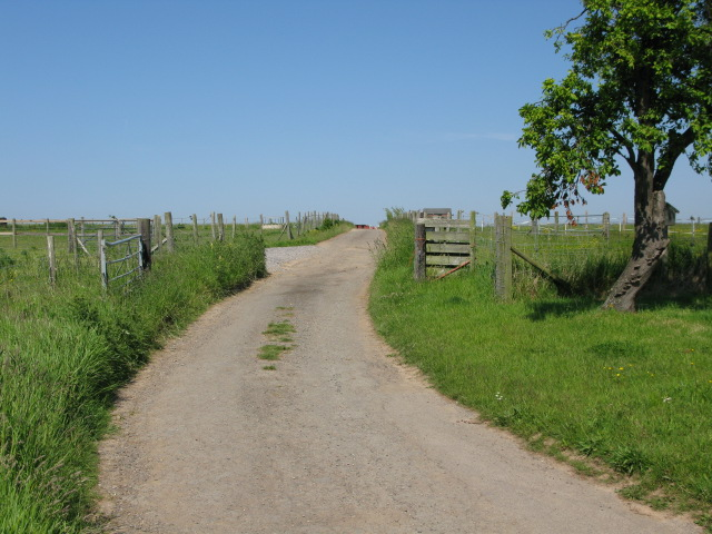 Farm track at Barville Farm