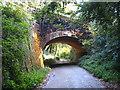SW9049 : Railway bridge at Treworgans by Rod Allday