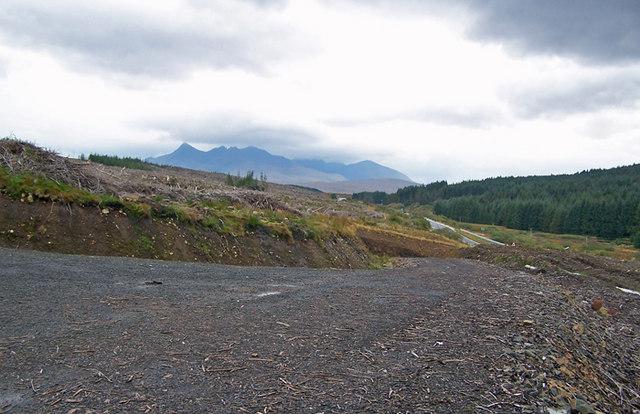 Glen Varragill from a forestry track
