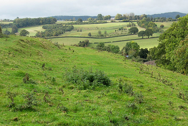 Sloping pasture, Linton