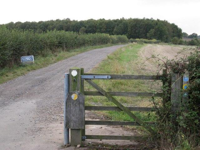 Bridleway to Ardenhill Spinney
