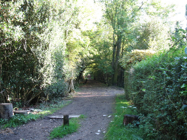 Bridleway from Boxhill Road