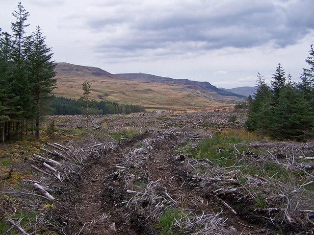 Clear fell in Glen Varragill