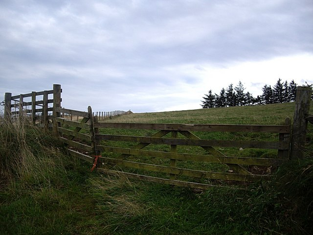 A wayside field and fence, Bar Hill