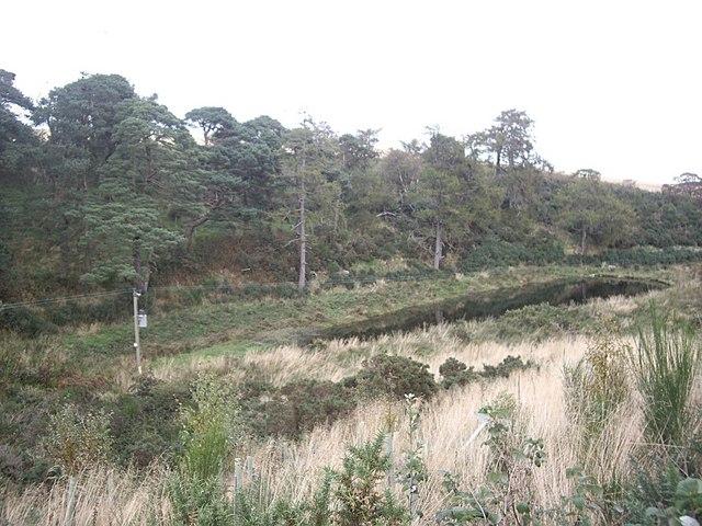 A small dam on Shield Burn
