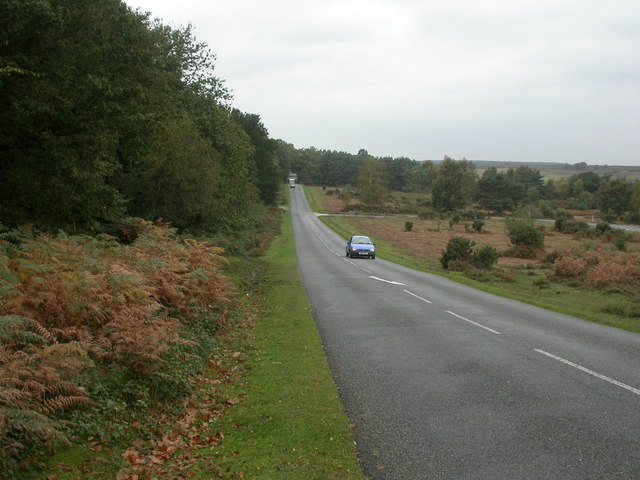 Long Slade Bottom