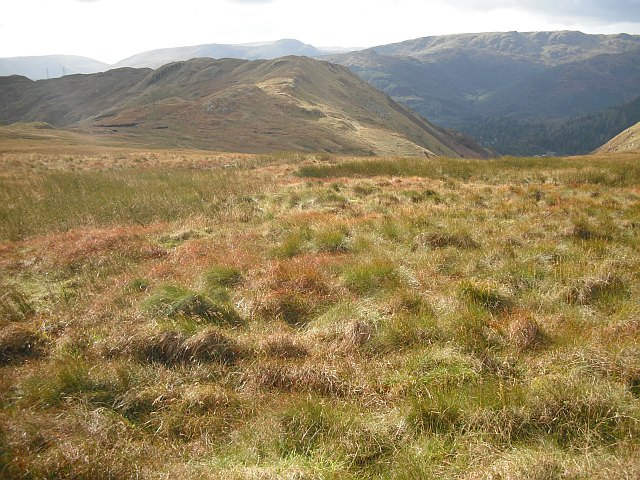 Bogs, Stronchullin Hill