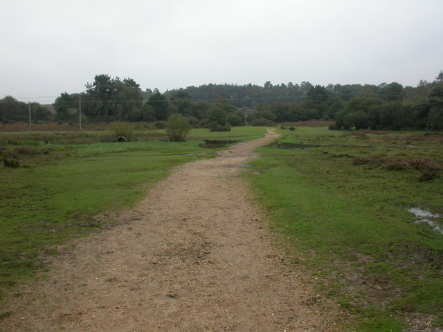 Hincheslea Bog, footbridge