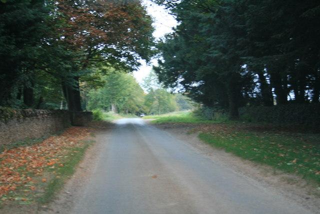 Minor road near Filkins Downs farm