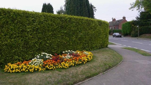 Well kept flowerbed at Lindford