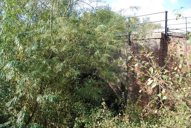 Railway bridge from Rainbow bridge, Haysden Country Park