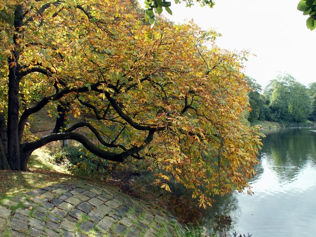 Autumn at Nostell Priory Middle Lake
