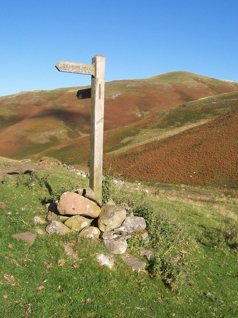 Pennine Way signpost near Old Halterburnhead