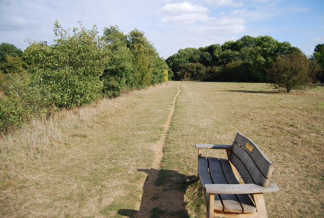 Bench by the riverside path, Haysden Country Park