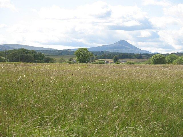 Grassland, Offerance