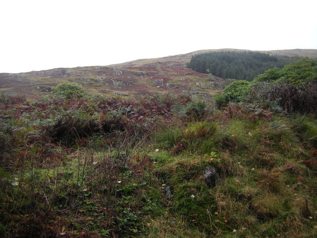 Slopes of Beinn na Cille, Kingairloch