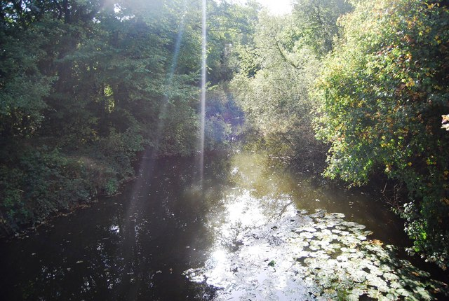 The Shallows, Haysden Country Park