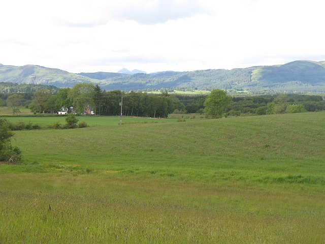 Grassland, Kepdowrie