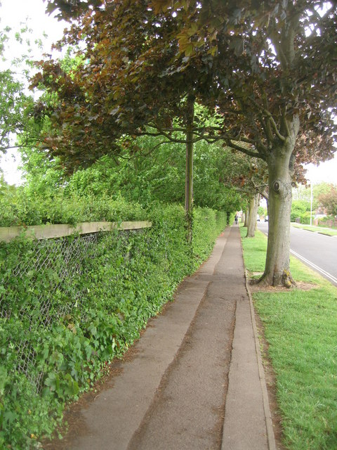 Footpath with workings