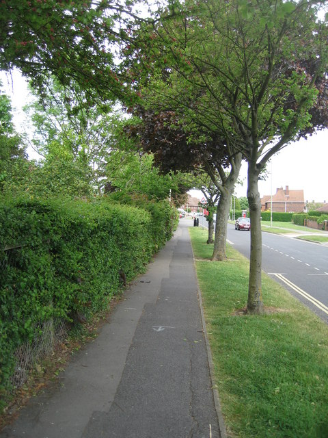 Queen Mary Avenue & footpath
