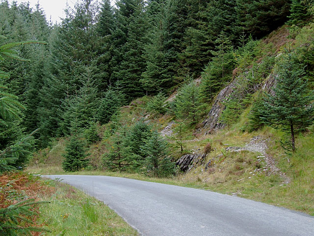 Road and bridleway in the Tywi Forest, Powys