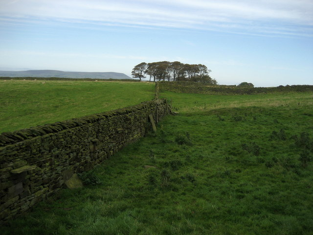 Fields near Hurstwood