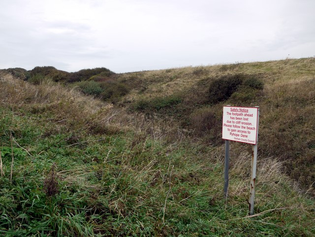 Small coastal dene, north of Seaham Hall car park