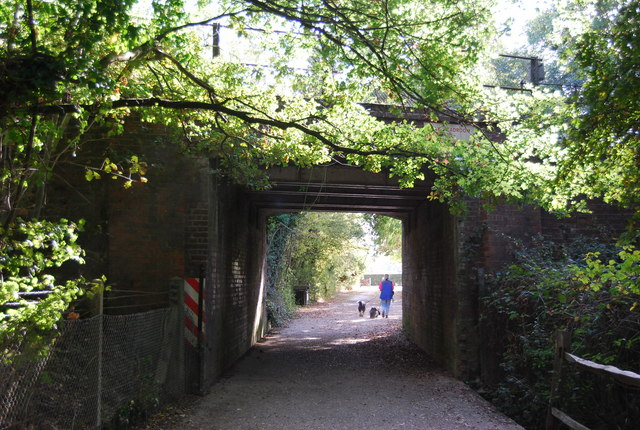 Railway bridge, Haysden Country Park