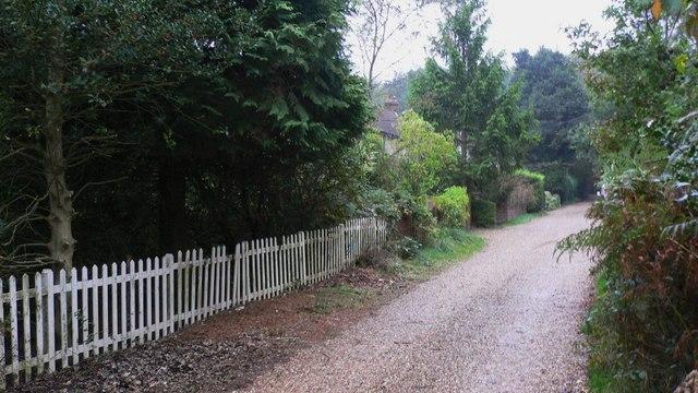 Bracken Lane