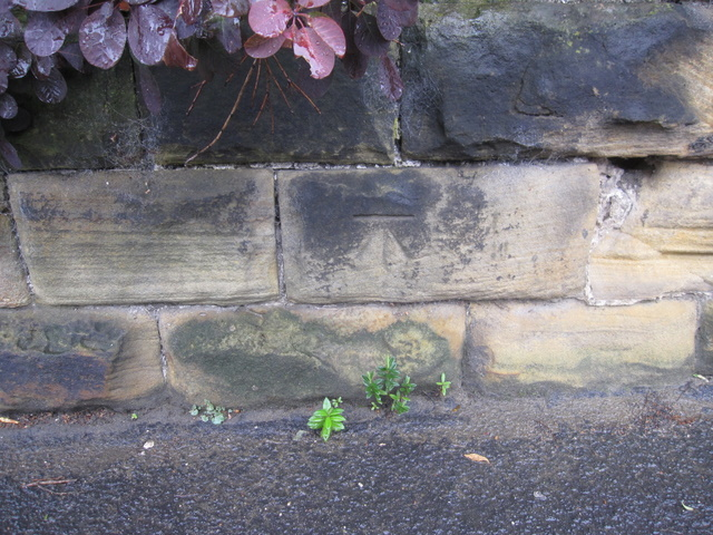 Bench mark on the garden wall of 4 Filey Road, Scarborough