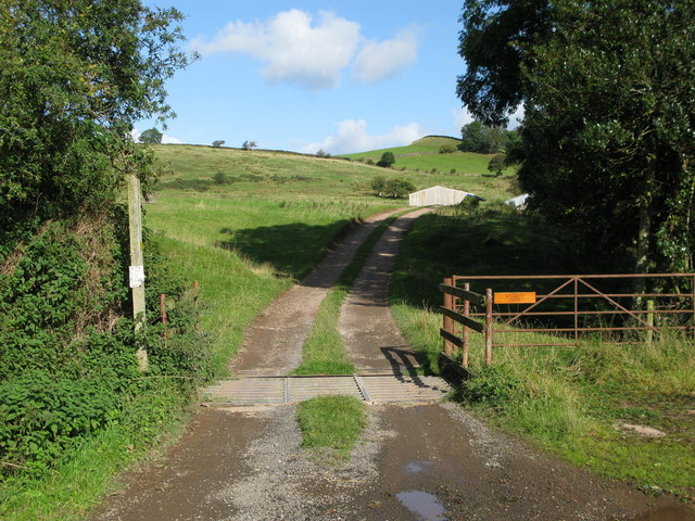 Bridleway to Thorney Gale