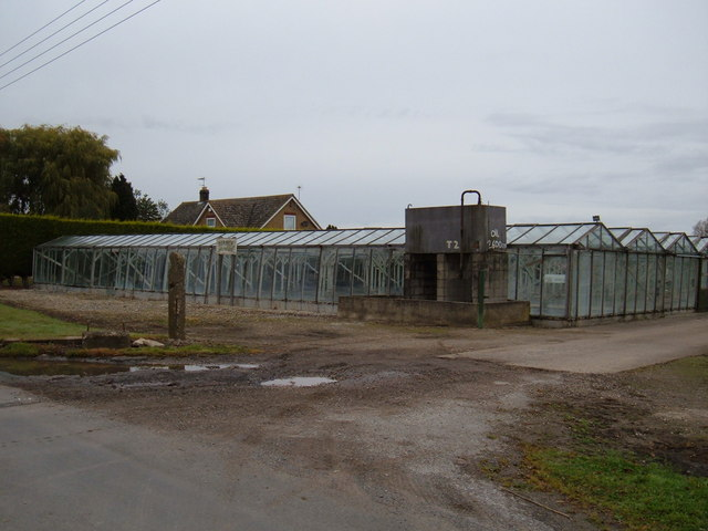 Commercial Greenhouses, Thearne