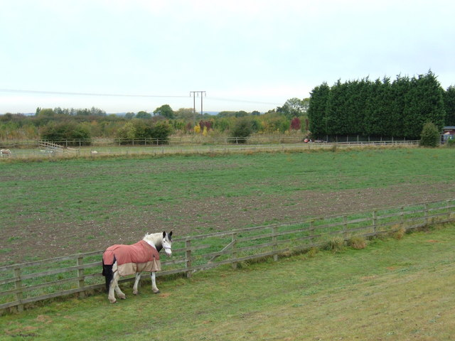 Farmland near River Hull, Thearne
