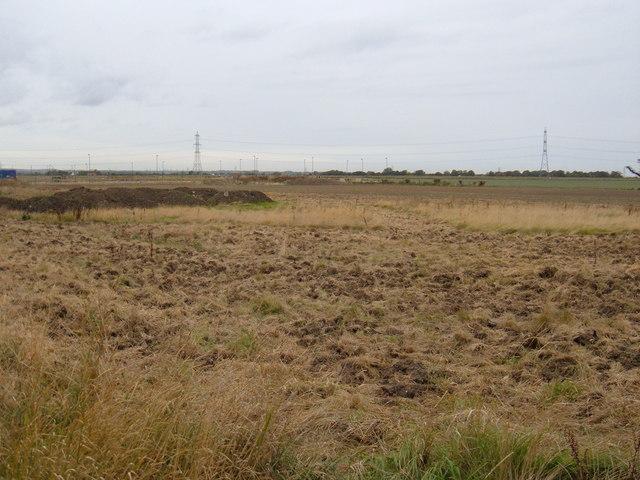 Rough Farmland, The Ings