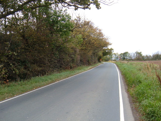 Minor Road Towards Meaux