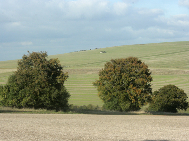 2009 : Looking north over a field prepared for next year
