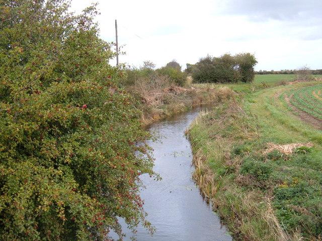 Lambwath Stream