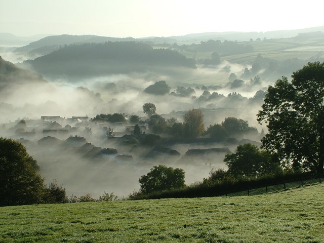 Misty Knighton morning